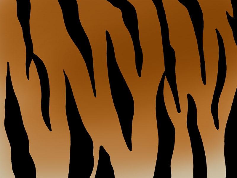 Tiger Print 171 Fantasy Art Series 171 Fantasy 171 Anime Wallpapers